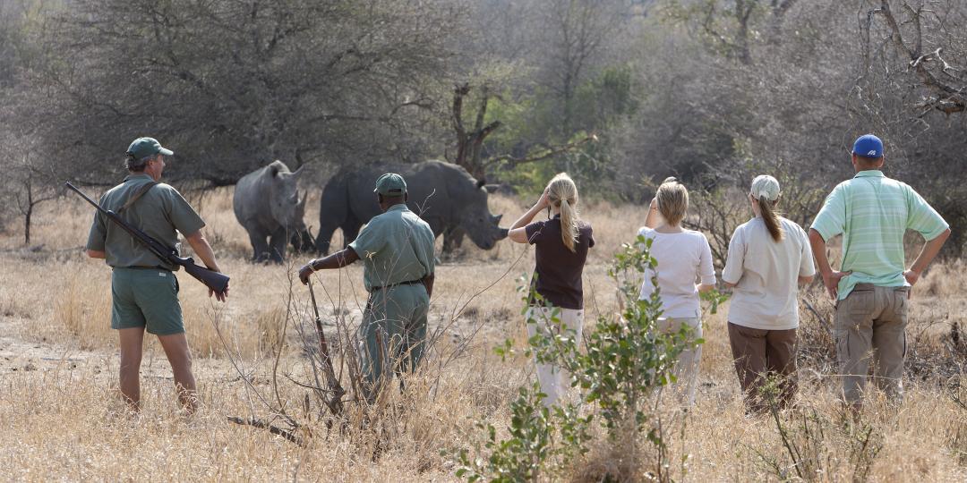 Rhino Walking Safaris Credit: Guy Upfold