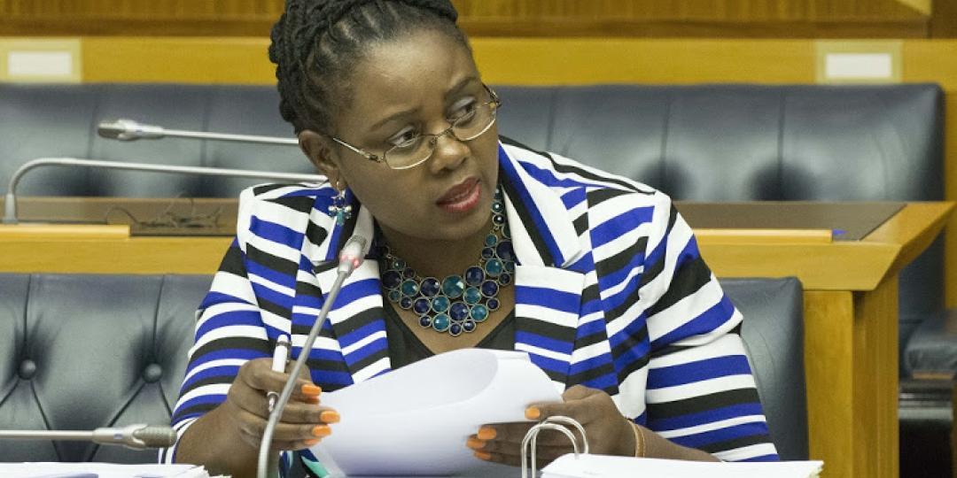 Minister of Tourism, Mmamoloko Kubayi-Ngubane.
