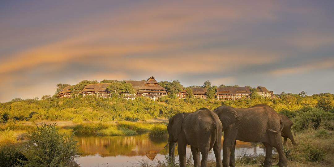 Elephants in front of Victoria Falls Safari Lodge.