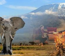 Tanzania has a 360-degree tourism offering, and emerging source markets are starting to take advantage. Credit: Azaniapost.