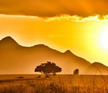 The first online Africa Travel & Safari Show held in February provided valuable insight whilst proving to be efficient, easy to use and accessible.