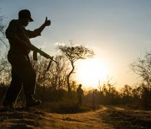 In Africa, a World Wide Fund for Nature survey found that 40% of rangers were not covered by health insurance, 50% had no life insurance and 60% had no long-term disability insurance.