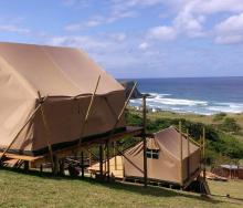 Wild Lubanzi Backpackers Lodge