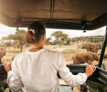 A private vehicle game drive, image courtesy of Ker & Downey